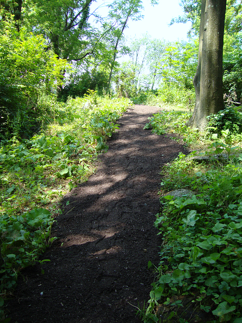 Therapeutic sensory trail - Enchanted Forest