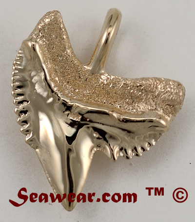 Tiger Shark Tooth Necklace - Page 2. Tiger Shark Tooth Necklace - Page 3...