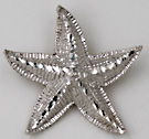 14kt white gold starfish with slide bail